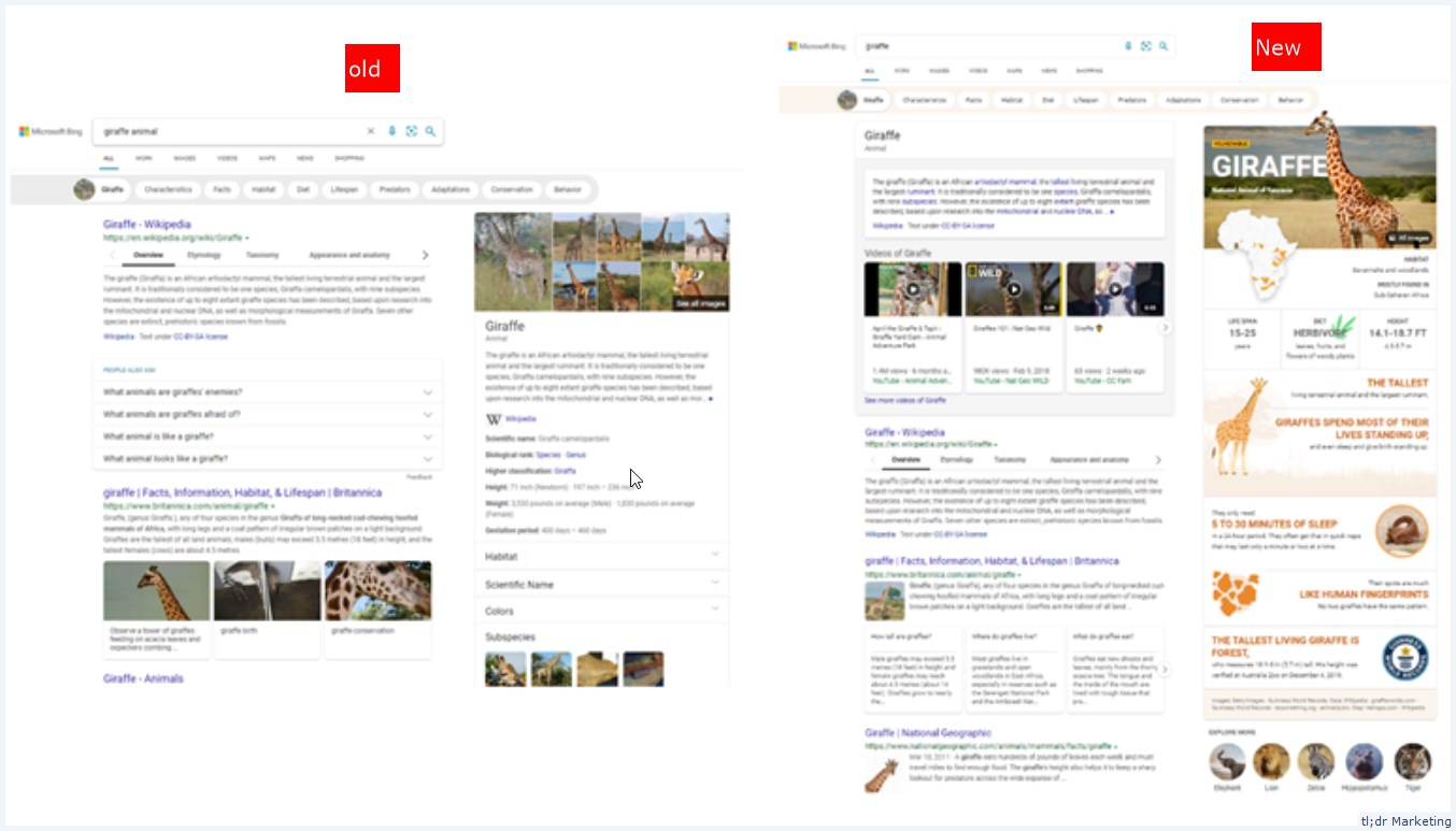 Bing Rolls out More Visually Immersive SERPs with Interactive and Infographic-Inspired Experiences